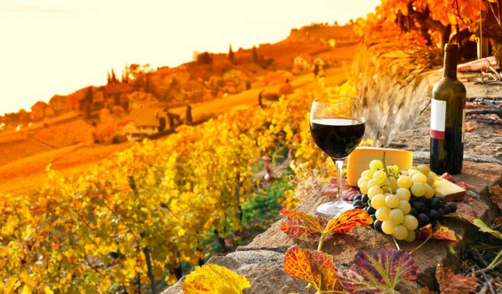 WINE TOUR IN TUSCANY COUNTRYSIDE
